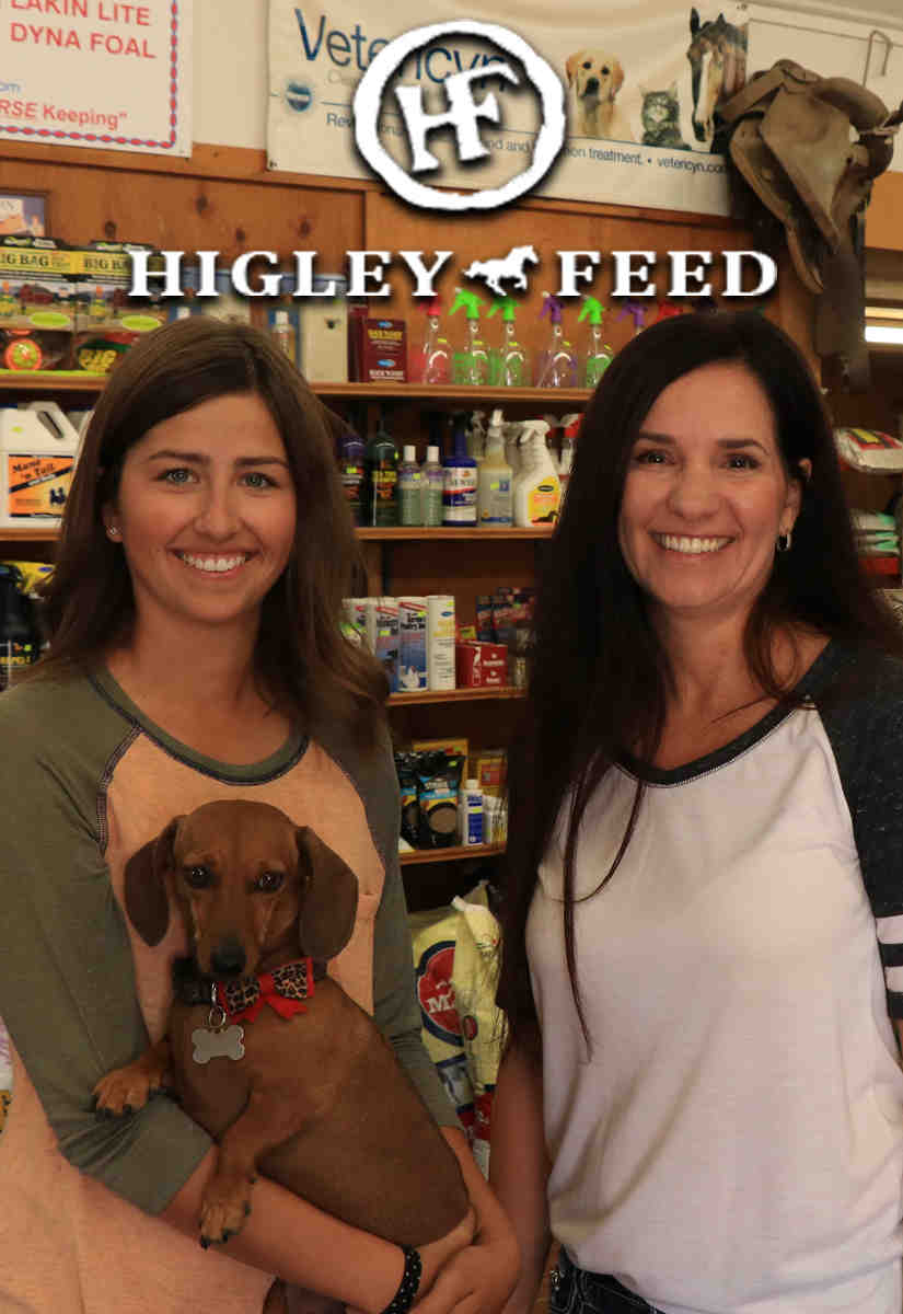Higley Feed