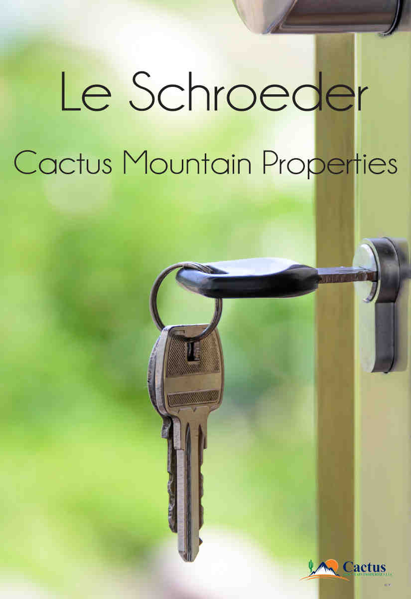Cactus Mountain Properties
